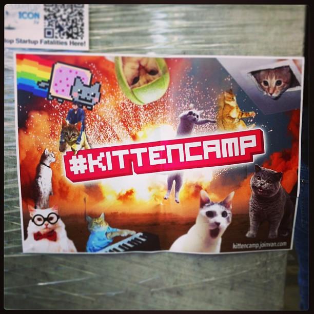 { #SXSW2013} Cat Collection ^ x ^♬