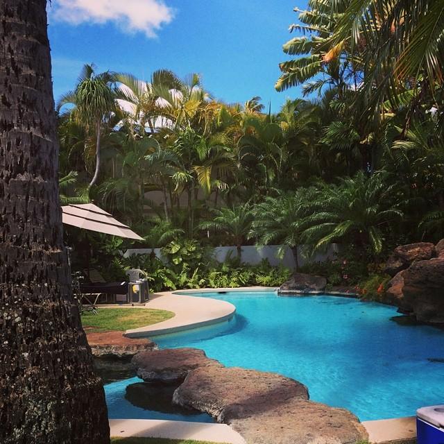 Sunny Hawaii