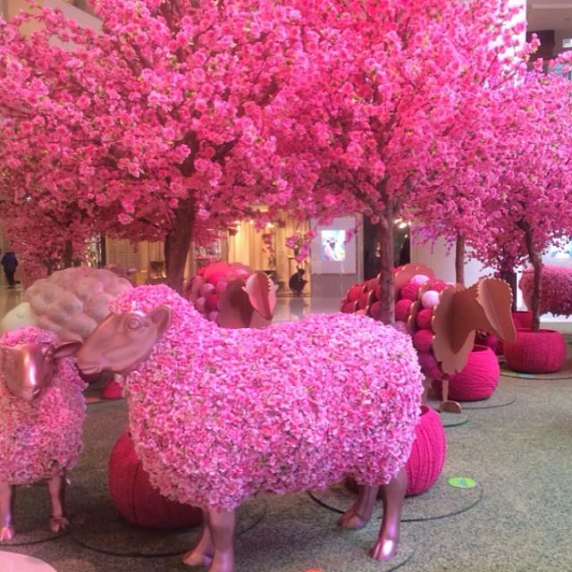 year of the pink sheep Hong Kong
