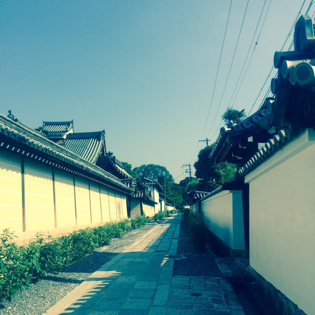 shooting in Kyoto.