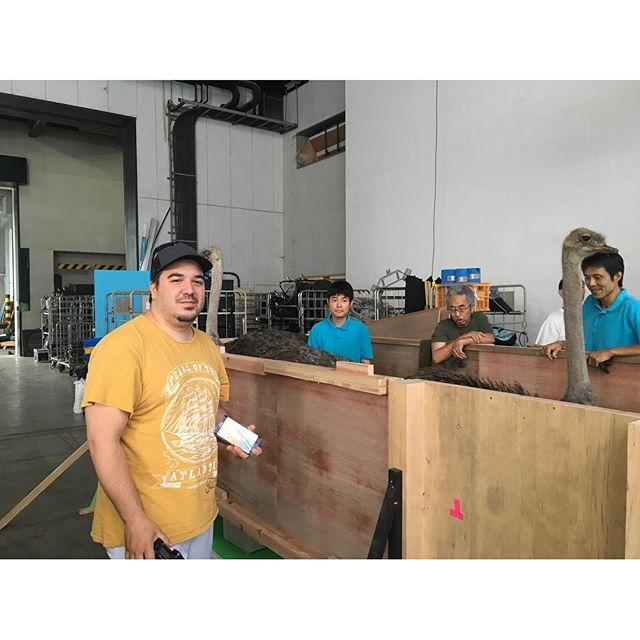 CGI supervisor Pablo x ostrich #tokyoshoot #swiss