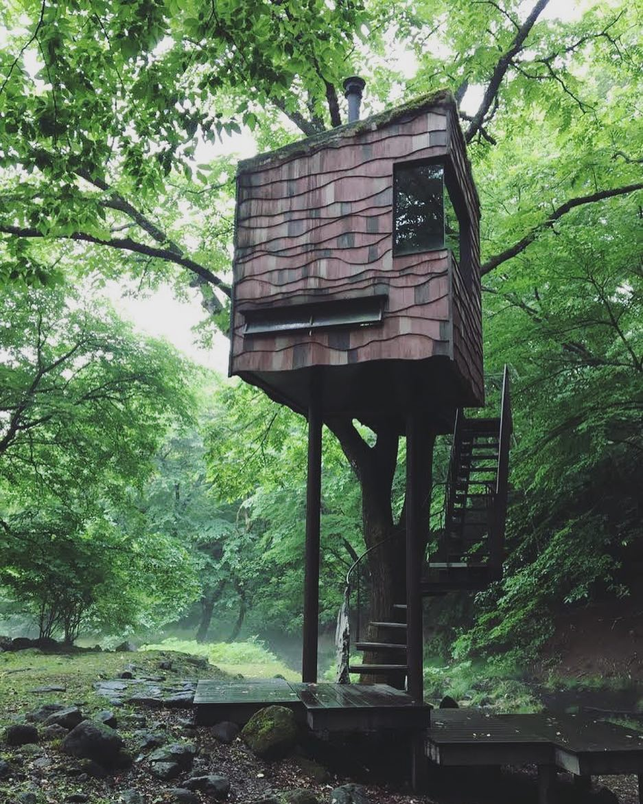 This week's update from AOI Global: Tree House in Nasu, Tochigi Prefecture