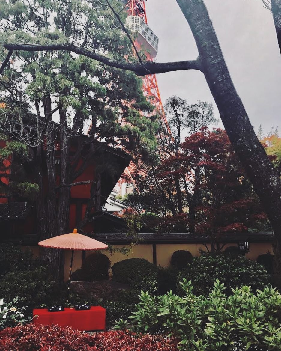 This week's update from AOI Global: Shiba Park & Tokyo Tower