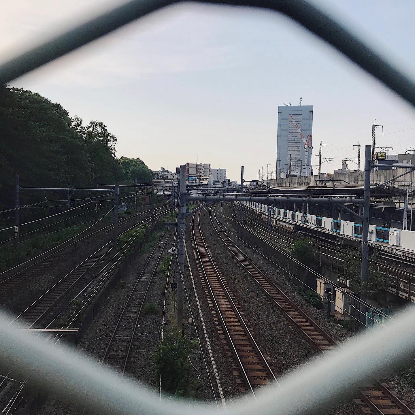 This week's update from AOI Global: Oji Station, Tokyo You can see both local and bullet trains from here!     #filmmakersworld     #shinkansen #whenintokyo