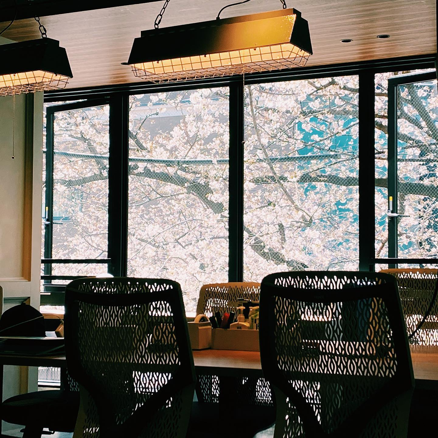 _ Cherry blossom season at the AOI Global Nakameguro office   A stunning spring view through our windows  #weeklyinspiration #tokyocherryblossom